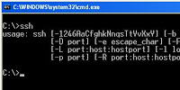 Running SSH on Windows
